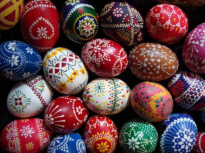 eggs - eggs - eggs - eggs