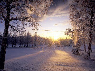 High Definition Winter Wallpapers