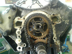 Timing Chain Loose