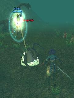 Fighting Bungas Underwater
