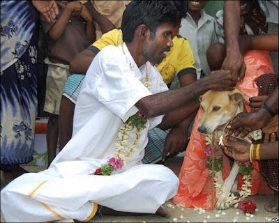 Gambar Kocak Nan Ngakak Dari India