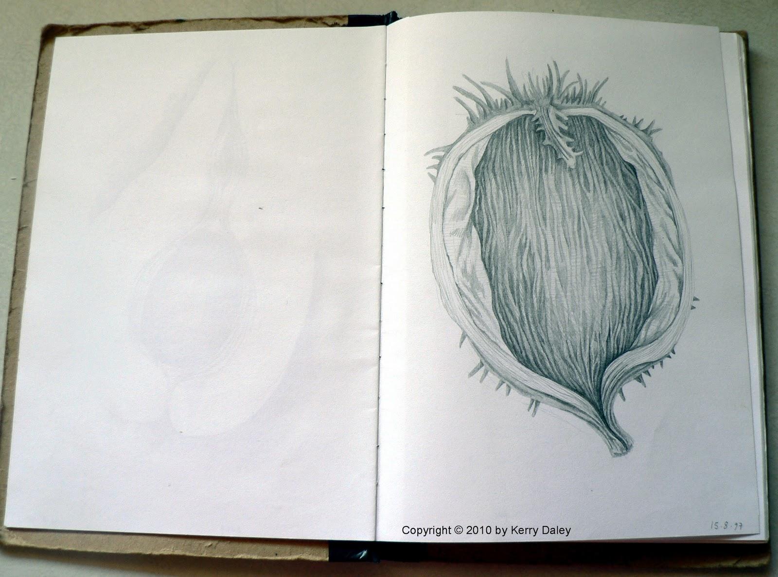 Easy Sketchbook Ideas Viewing Gallery