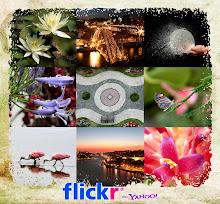 Minhas fotos no Flickr