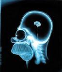 El cerebro procesa 400 mil millones de bits por seg. y solo somos conscientes de 2000.