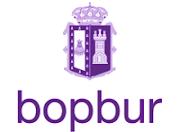 Boletín Oficial de la provincia de Burgos