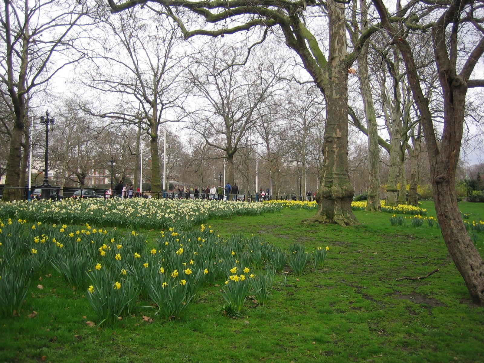 Alidei londres parques y jardines for Parques y jardines