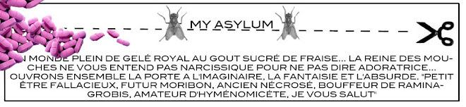 My asylum