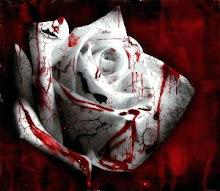 una rosa con sangre