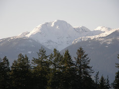 Mount Palmerson at the height of winter