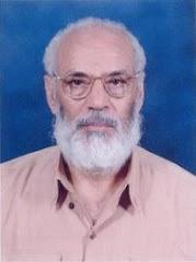 الأستاذ محمد السخاوي