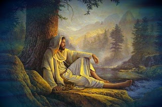 Jesus Christ sitting under the tree in the forest hd(hq) religious Christian wallpaper