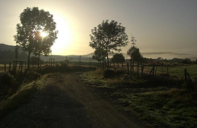 Etapa1-Roncesvalles-Larrasoaña