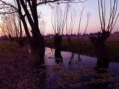 Il fossato al tramonto. Foto di Andrea Mangoni.