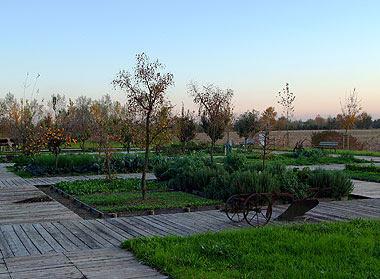 Il campo di frutta e ortaggi vicino al casone rosso. Foto di Andrea Mangoni.