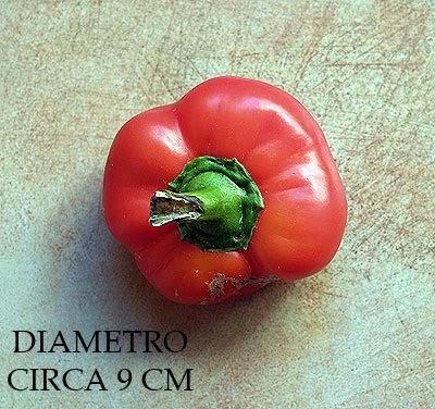 La biodiversit in cucina il peperone piatto o - Silvana in cucina ...