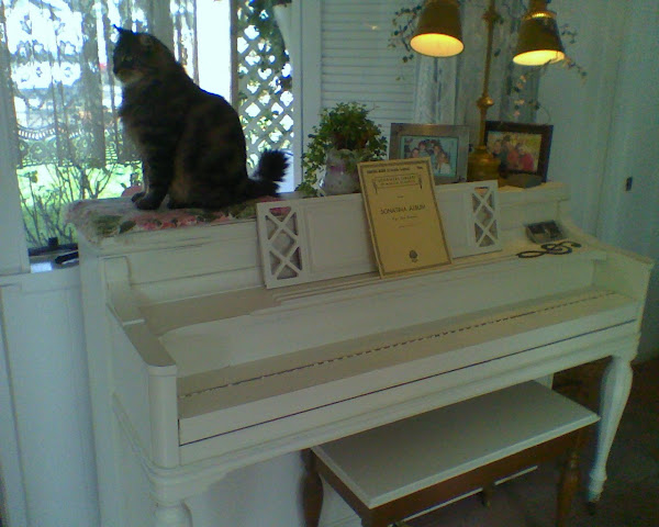 She 'painted' her piano white!