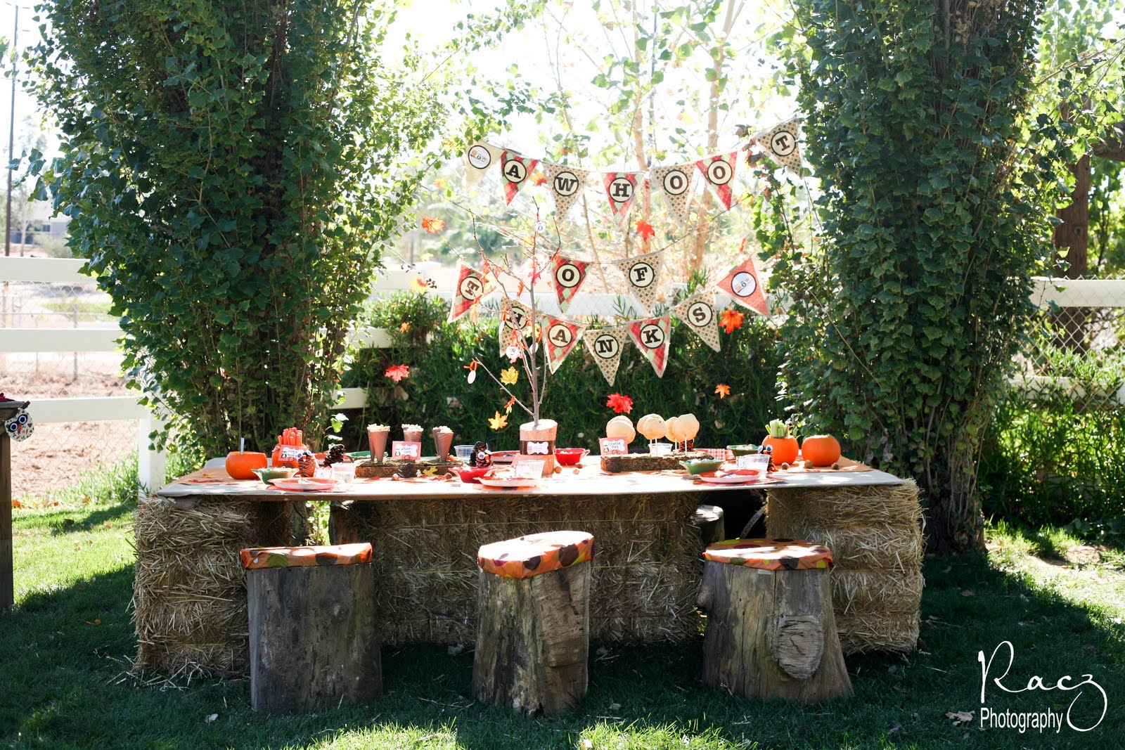 Have A Party Based On The Outdoors Weather Permitting You Can Still Hold It Outside However Just In Case Will Want To Back Up Plan Place
