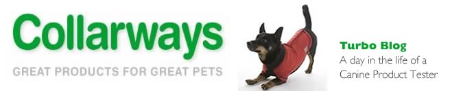 Turbo's Blog -  Canine Product Tester and Bon Viveur