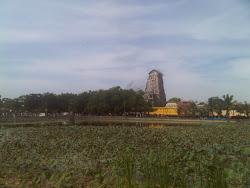 மாமாங்கம்