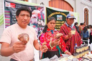 Viajes los deliciosos hongos de marayhuaca for Como se cocinan los hongos