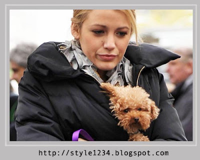 Blake Lively Penny on Blake Lively S Maltipoo Penny