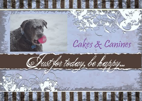 Cakes & Canines