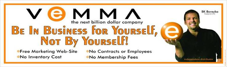 Vemma Nordien Success Team
