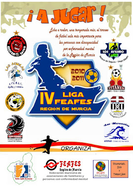 CARTEL DE LA LIGA FEAFES 2010-2011