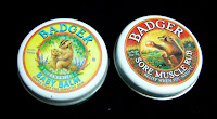 WS Badger line of organic ointment balms