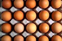fraicheur oeufs, œuf frais