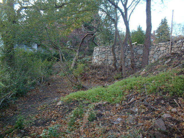 Landscaping Woodland Wa : Garden in oak bay jonathan craggs landscape design