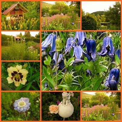 Ein Garten in Biedenkopf