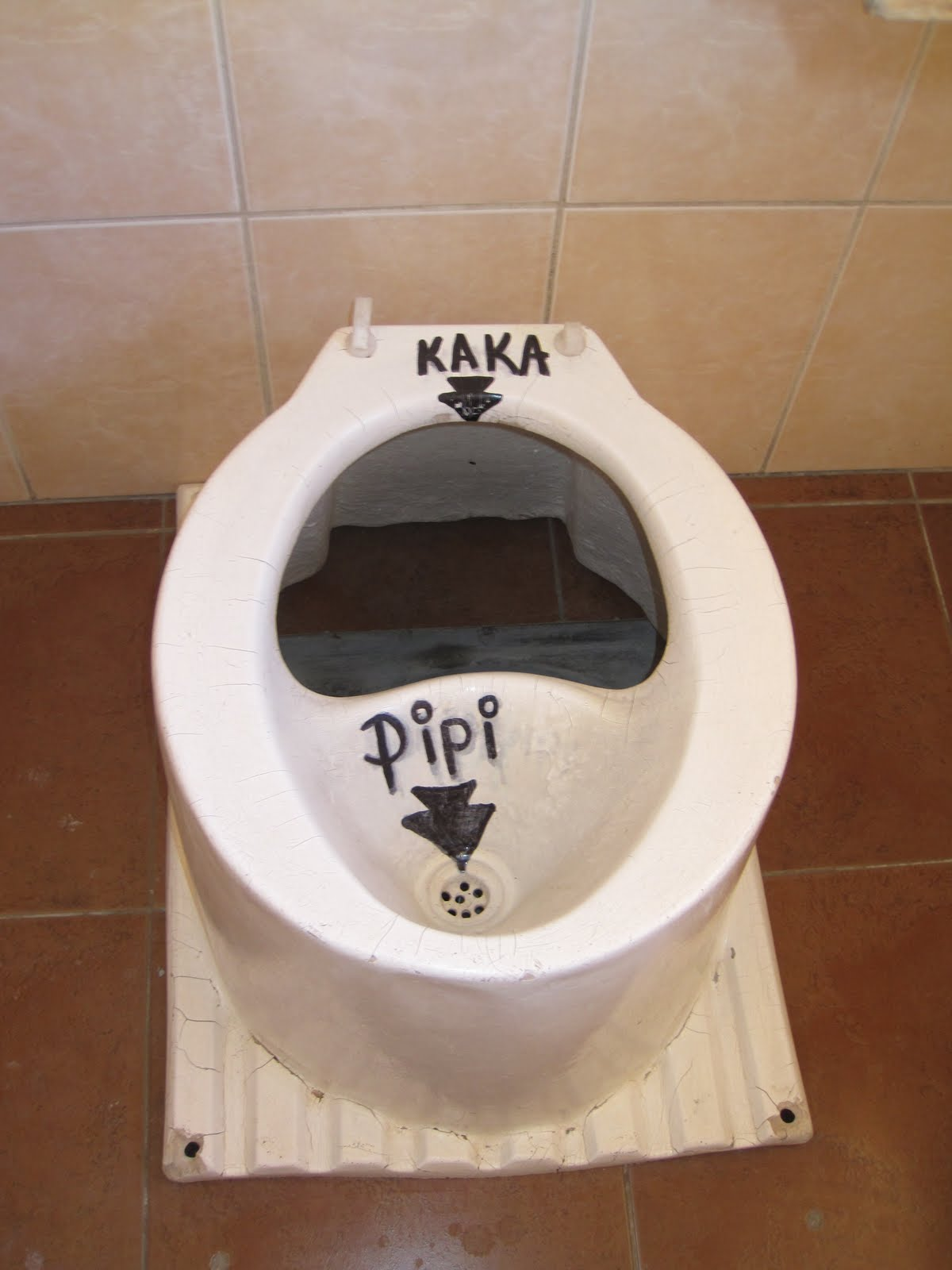 Tour de South America: Interesting toilet