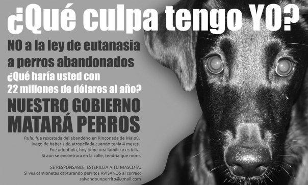 Sumate a la marcha contra la matanza de perros en Neuquén No-a-la-ley-de-eutanasia-animal