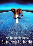 No Abandones tu Mascota