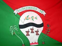 Bandeira do Município de Pilõezinhos