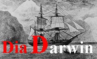 Dia Darwin