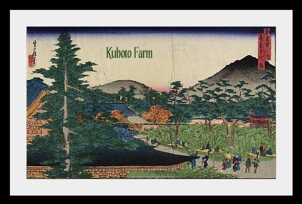 Kuboto Farm