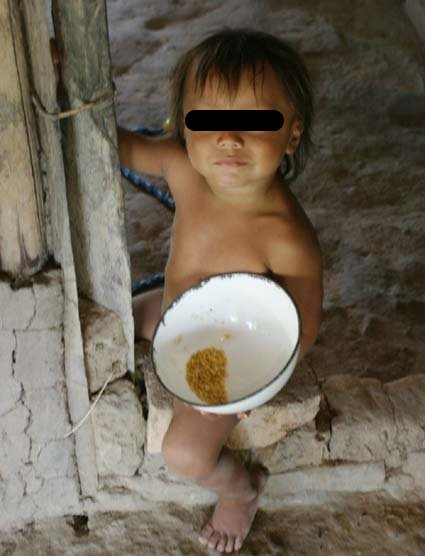 """""""Vi ontem um bicho, catando comida entre os detritos...O bicho, meu Deus, era um homem"""""""