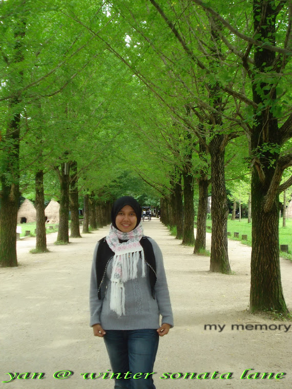 @ winter sonata lane