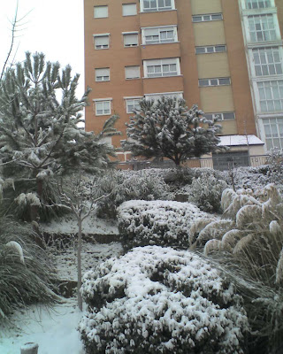 Madrid nevado