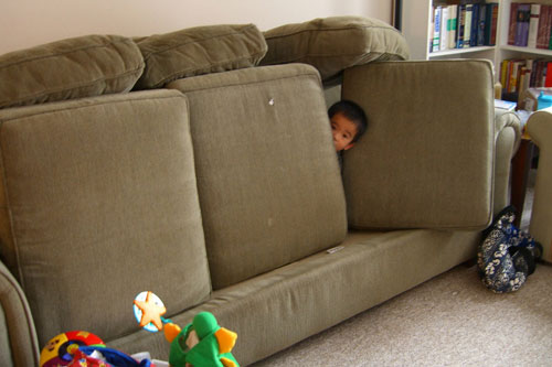 Couch Cushion Architecture