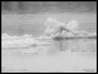 ice floating on water