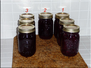blueberry pie filling, blueberry syrup, blueberry juice