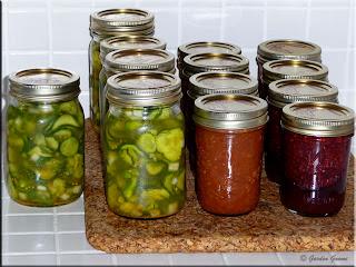 freezer pickles, plum sauce, chocolate raspberry sauce