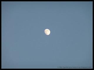 moon September 19, 2010