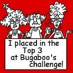 bugaboo / catch the bug