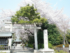 Shoin Jinja / 