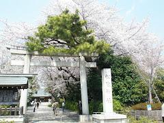 Shoin Jinja / 松陰神社