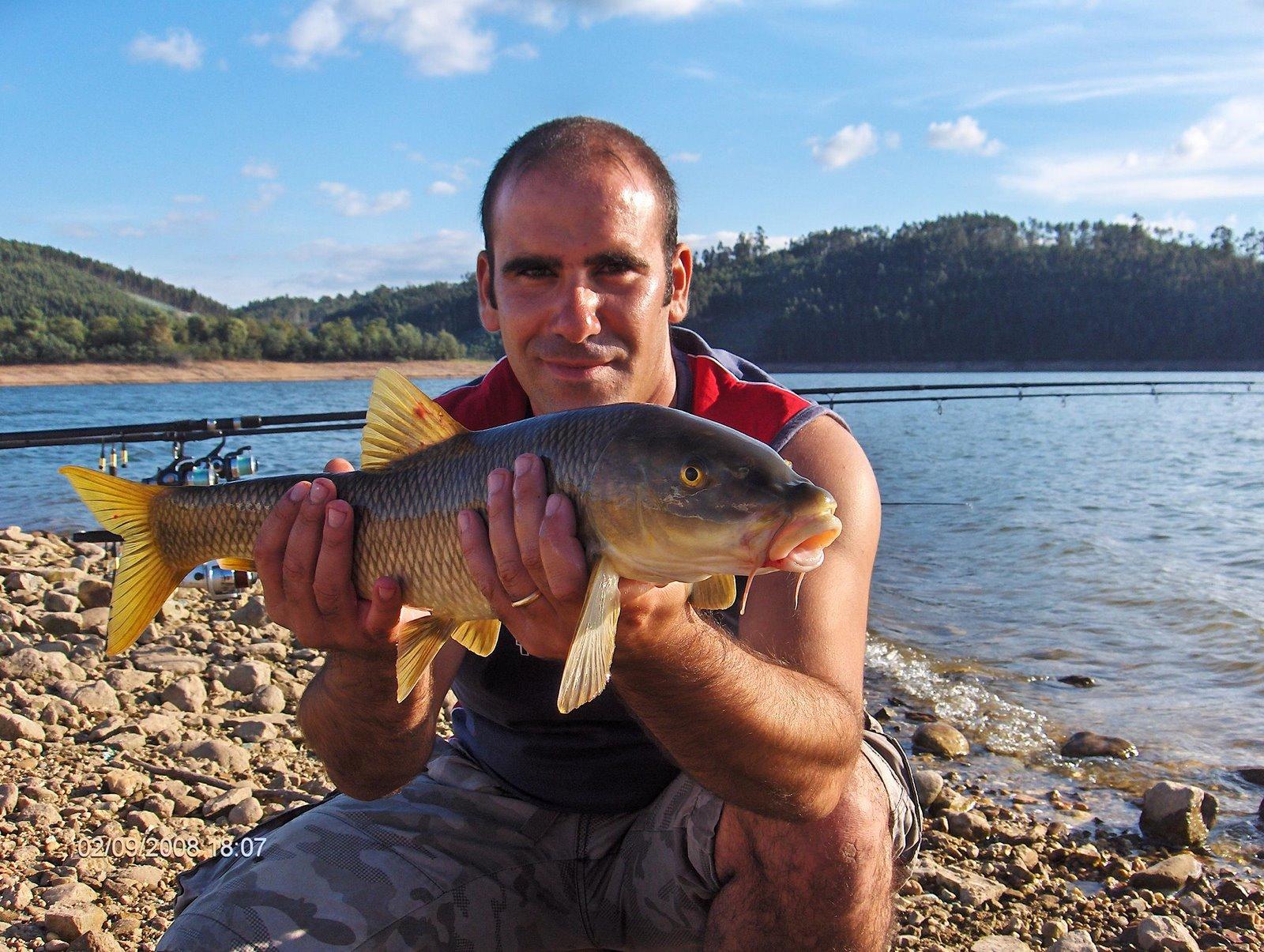 Barbo 2,4 kg Aguieira 2 Setembro 2008